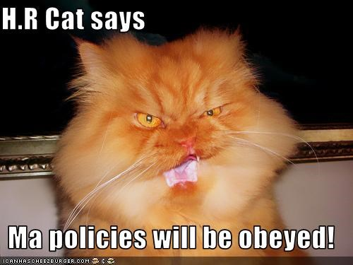 obey hr cat