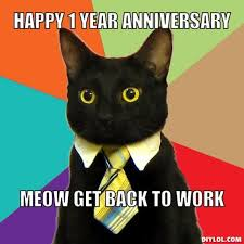meow get back to work