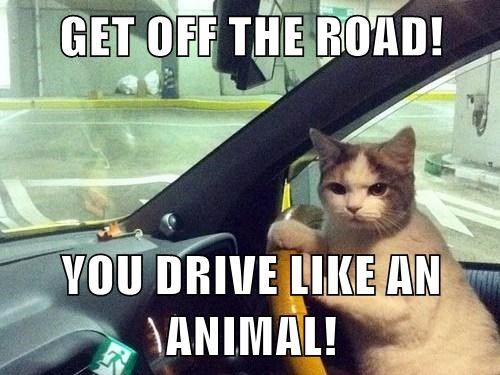 get off the road